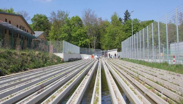 Fig. 1: The stream mesocosm facility at the Campus Landau (photo by M. Wieczorek)
