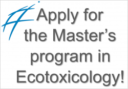 Phd thesis ecotoxicology