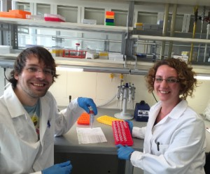 Vasco Elbrecht and Anna Kästel in the lab in Essen. Two weeks to prepare one small tube with all the DNA of about 2000 chironomid specimens! (photo by V. Elbrecht)