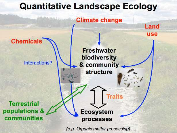 Overview of the core topics of the working group Quantitative Landscape Ecology