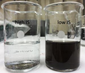 Pd nanoparticle aggregation in medium with high (left) and low IS (right), indicating accelerated particle sedimentation with increasing IS (photo by S. Lüderwald)