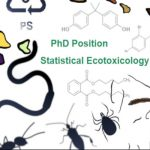 Picture noting PhD position in statistical ecotoxicology